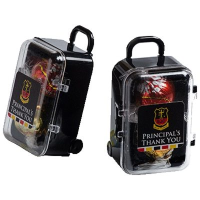 2 Lindt Balls Hand Carry Case