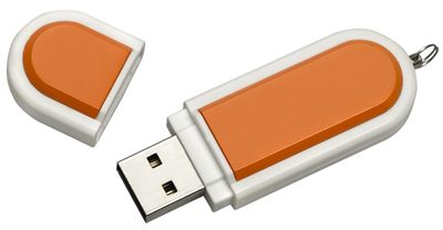 Lannister Flash Drive