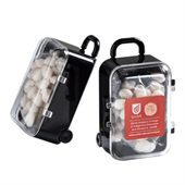 50g Mints Hand Carry Case