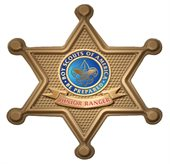 Arizona Sheriff Button Badge