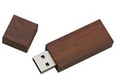 Eco Friendly USB Drives