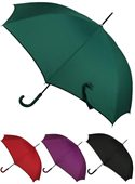 Livingstone Umbrella